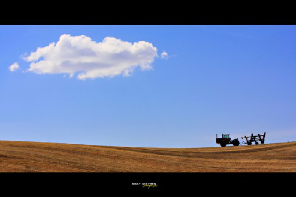 The Palouse Experience (Part I)